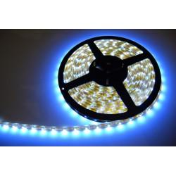 Taśma 300 LED 3528 5m Biała ZIMNA - IP65