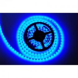 Taśma 300 LED 3528 5m NIEBIESKA - IP65